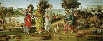Judgement of Paris, Botticelli